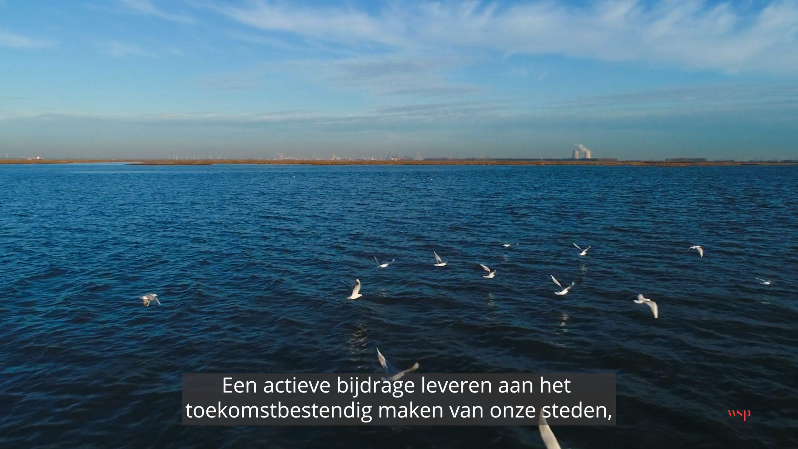 WSP in Nederland – Bedrijfsvideo